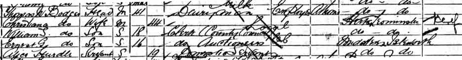 1901 census bodger
